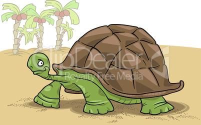 big turtle cartoon