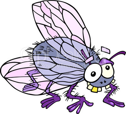 funny fly cartoon