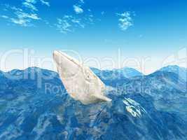 Weisser Wal