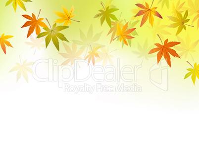 Autumn Background Fall Leaf Herbst Hintergrund Herbstblatter