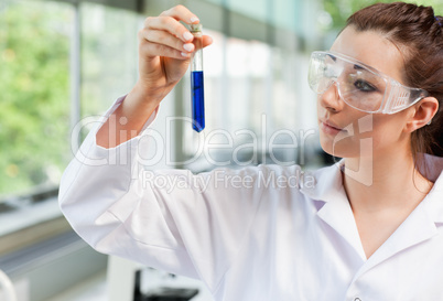 Science student looking at a test tube
