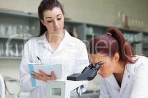 Student looking into a microscope while her classmate is taking