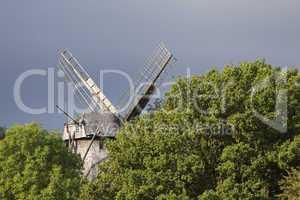 Windmühle hinter Bäumen