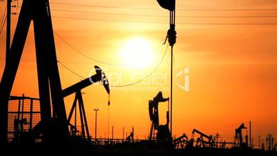Pump Jacks Producing Crude Fossil Fuels