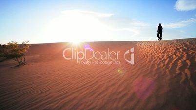 Distant Figure Trekking in Desert Environment