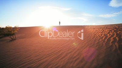 Lone Figure Trekking in Desert Environment