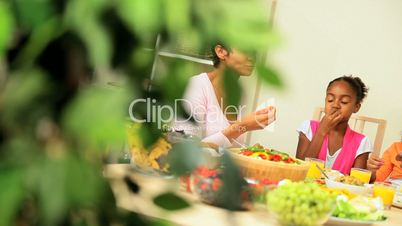 Young Ethnic Family Sharing Healthy Lunch