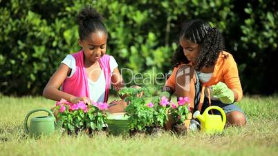 Little African American Girls Gardening