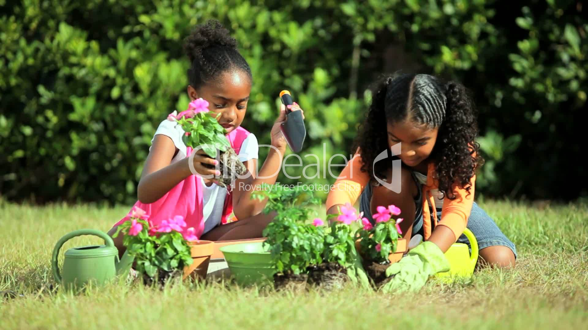 Little African American Girls Gardening Royalty-Free -7217