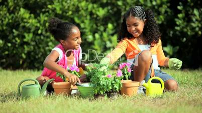 Cute Young African American Girls Gardening
