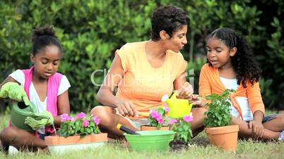 African American Girls & Their Mother Gardening Together