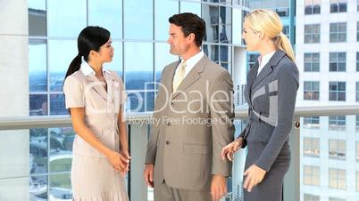 Multi Ethnic Male & Female Business Team
