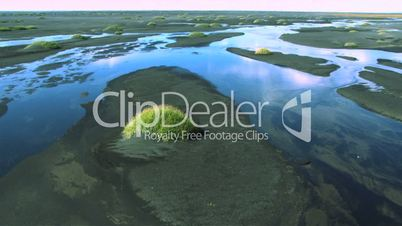 Aerial View of Fertile Growth in Volcanic Meltwater, Iceland