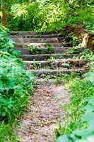 Old stone stairs leading.