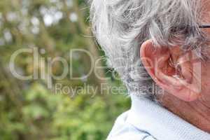 Hearing device