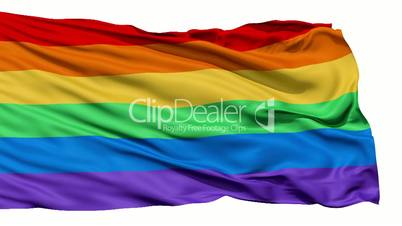 Realistic 3D detailed slow motion gay flag in the wind