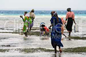 Women and children in Zanzibar