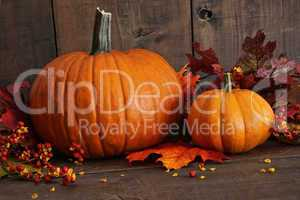 Harvested pumpkins on wood table