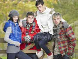 Young friends sitting on fence