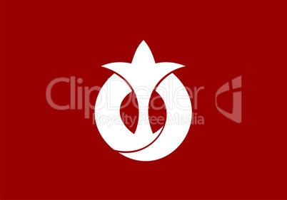 aichi flag