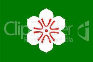 saga flag