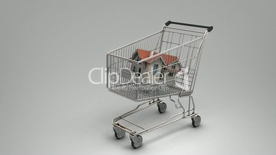 House in the shopping cart