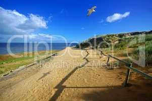 Wege auf Sylt am Morsumer Kliff
