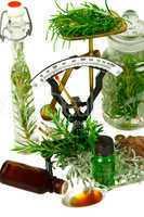 Kräuter, Rosmarin und verschiedene Santolina Arten für Medizin