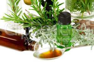 Kräuter (Rosmarin und Santolina) für Medizin