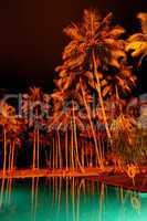Night illumination of swimming pool and palms at luxury hotel, B