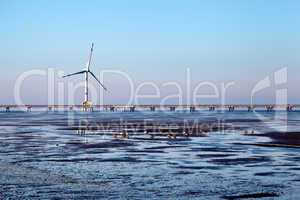 Offshore Windkraftanlage - Offshore Wind Energy