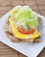 Healthy sandwich.