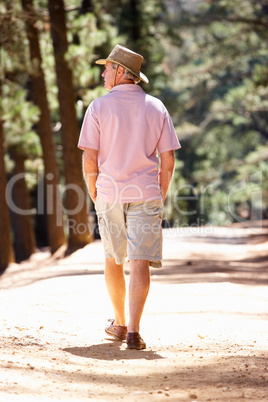 Senior man on country walk