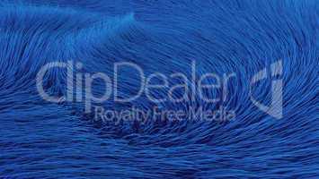 Wirbel in blauem Fell - Hintergrund