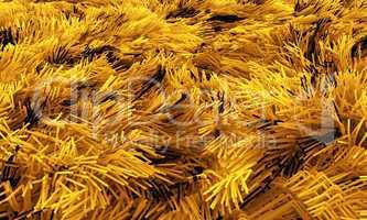 Wilder Teppich - Gelb Schwarz