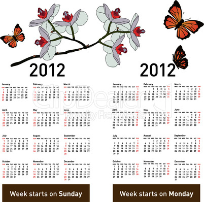 Stylish calendar with flowers and butterflies for 2012.