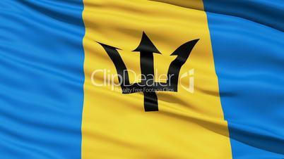 Fluttering Flag Of Barbados