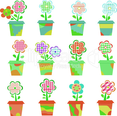 Spring Flowers In Pots Isolated On White