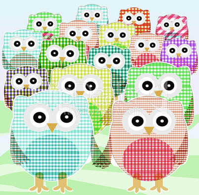 owls Collection set cute and colorful. vector