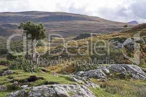 rural landscape in the scottish highlands