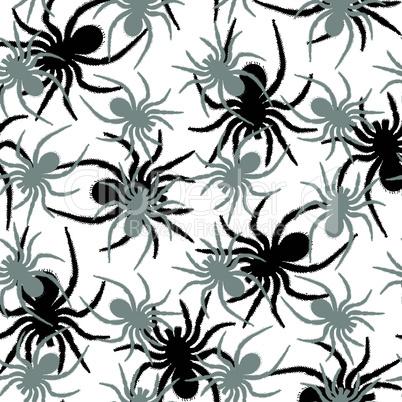 spiders pattern