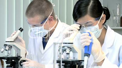 Laboratory Assistants Working on Research Data