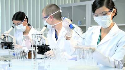 Three Assistants in Medical Research Laboratory
