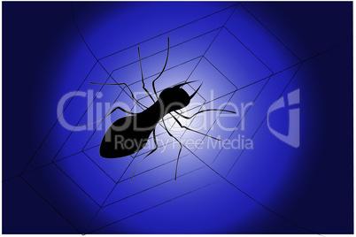 spider.eps