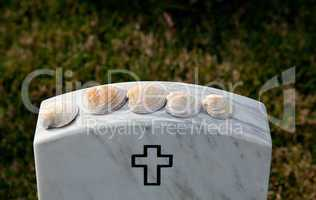 Sea shells in Arlington Cemetery