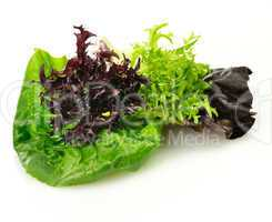 fresh salad leaves assortment