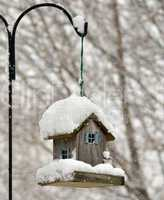 bird feeder in the winter park