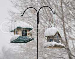 bird feeders in the winter park