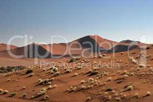 Namib Wueste, Namibia