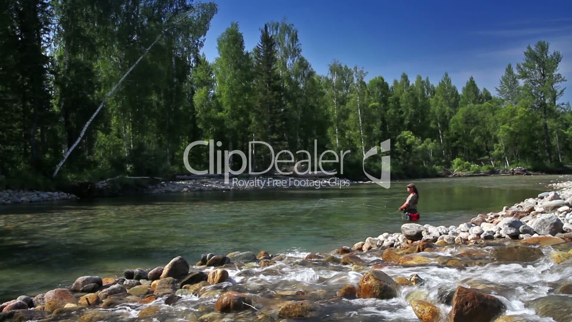Fly fishing royalty free video and stock footage for Fly fishing jobs